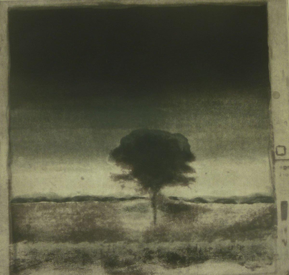 Prints-B-Tree-2–2019-08-12-12.37.34-2