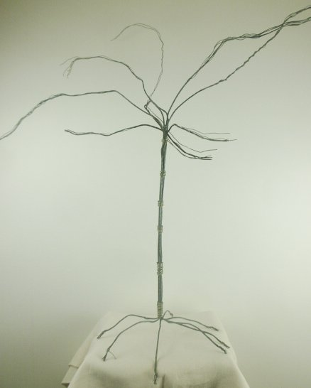 large tree (wire) uncropped